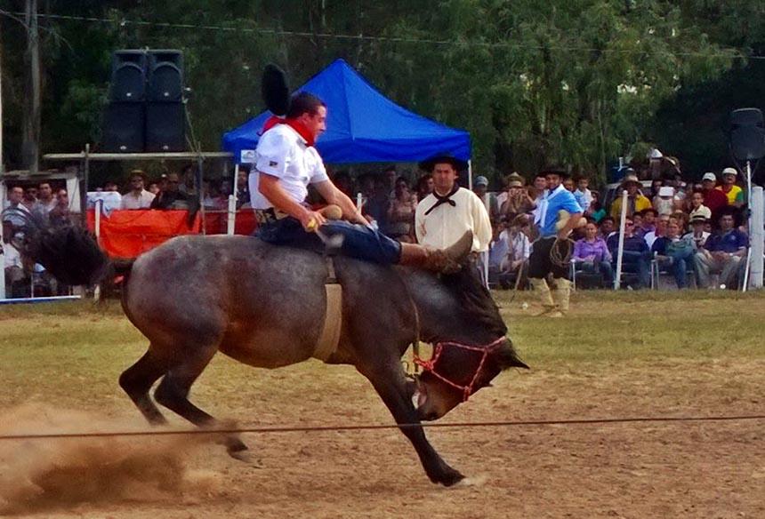 Photo of Rodeio em benefício à Liga acontece neste mês