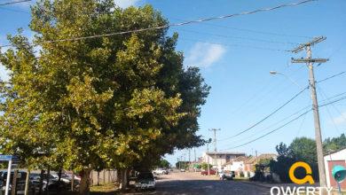 Photo of Sábado terá sol e temperaturas amenas na maior parte do Estado