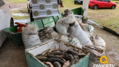 Photo of 3º Pelotão Ambiental da BM detém pescadores profissionais em Dom Pedrito