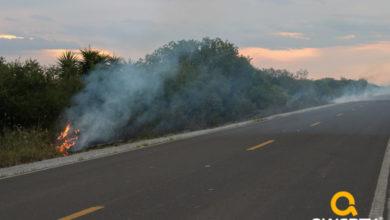 Photo of Fogo em Vegetação às margens da BR-293