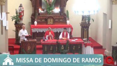 Photo of Católicos podem assistir missas diárias através da Qwerty Portal de Notícias