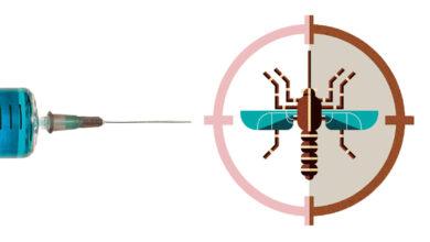 Photo of Uma nova vacina contra a dengue